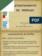 Levantamiento de Perfiles PDF (1)