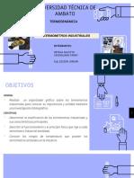 Ortega Caisaguano TERMOMETROS I