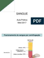 Sangue Prática MED 2017