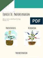 Exercise 10 Photorespiration.pdf