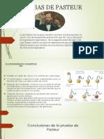 Pruebas de Pasteur