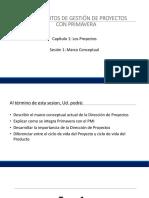 Promgrama P6 Para proyectos