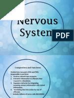Nervous System Report.pdf