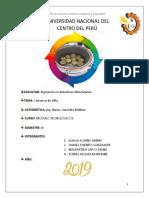 Conserva de Piña (1)