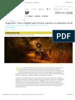 Sagarana, Livro Exigido Pela Fuvest, Aponta Os Caminhos de Rosa – Jornal Da USP