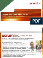 Agile-Testing.pdf