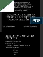 Anatomia de Miembro Inferior (1)