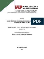 DIAGNÓSTICO FISICOQUÍMICO DE LA CUENCA ALAMEDA - AYACUCHO