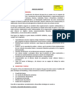 ANÁLISIS-AMOFHIT.docx