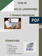 Esquema Informe Lab.