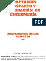 Adaptación posparto.pptx