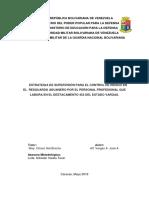 Informe tactico Final