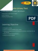 Urologic Trauma