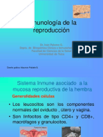 Riñon Patologia