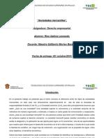 Cuadro Comparativo SA Y SDRL