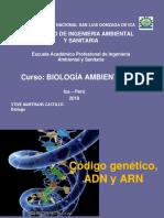 4 Biología Del ADN