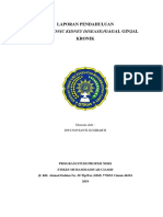 LP CKD dns.docx