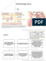 Patofisiologi Asma.pptx