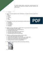 Soal SBMPTN Biologi Paket 3