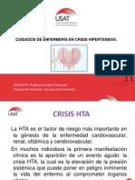 Crisis Hta (1)