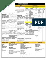 MATRIZ CONSISTENCIA AUDITORIA 2 version final 2017.docx