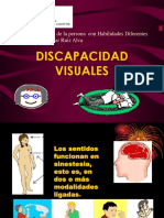 Deficiencias Visuales Upn