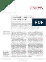 8 DNA Methyl at Ion