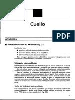 Cuello.pdf