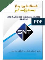 Swe Naing Thu Company Profile - Master