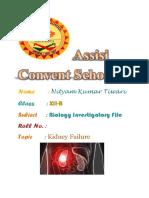 bio file.docx
