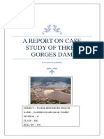 A Report on Case Study of Three Gorges Dam