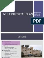 multicultural plan  sydney