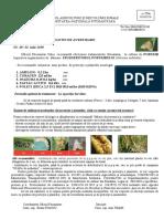 B.a. nr. 49 din 02. 07 - Sflederitorul porumbului.doc.pdf