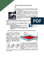 Judo Subir