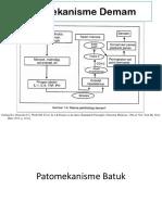 Patomekanisme Demam + batuk