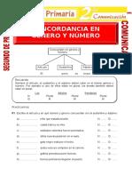 Concordancia-en-Genero-y-Numero-para-Segundo-de-Primaria.doc