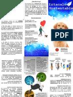 FOLLETO PERROS (3) listo para imprimir.ppt