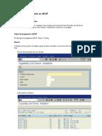 ABAP_Para_Funcionais.doc