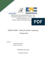 PSQ15.2_Relatorio_OHSAS18001_ClaudioGustavo.docx