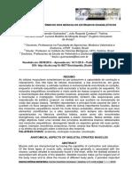 aspectos+anatomicos+dos+musculos_artigo.pdf