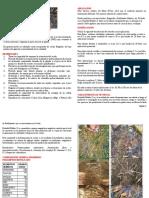 NUTRAFOL Enraizante y Desbloqueador de Suelos EDAFIX-21-Ver3