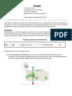 Ecología AFM