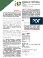 Nutrafol Fertilizante Maiz - Ver3