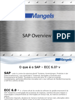 Overview SAP
