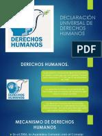 Declaración Universal de Derechos Humanos II