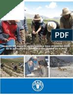 Peru_ESTUDIO_FINAL_FRIAJE_OCT_13_2008.pdf