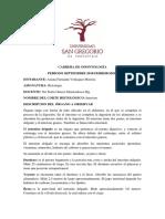 histologia-informe