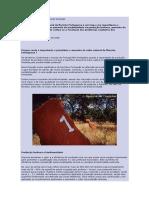 manual Silvicultura Da Biodiversidade