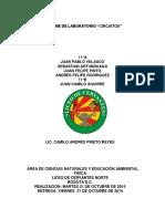 INFORME_DE_LABORATORIO_CIRCUITOS.docx