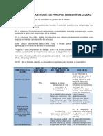 Anexo Ejemplo Diagnostico de Los Principios de Gestión de Calidad.(1)